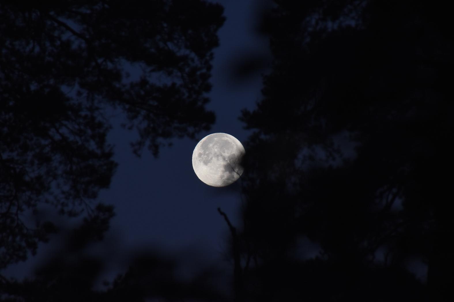 Melkein täysi Kuu