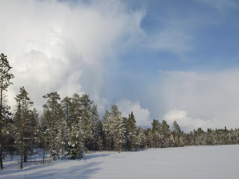 Pilviä talvitaivaalla